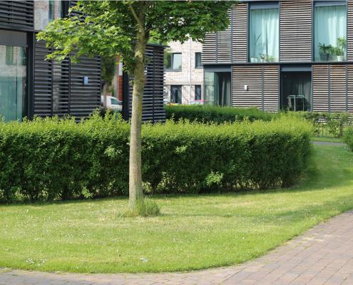Wageningen Rijnveste openbare ruimte MAAKspace