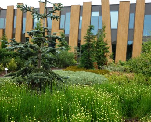 schoolplein beplanting MAAKspace